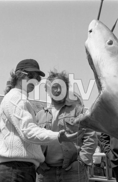 """""""Jaws""""Director Steven Spielberg, Richard Dreyfuss1975** I.V. - Image 9575_0206"""