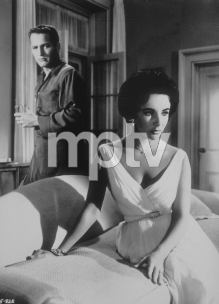 """Cat on a Hot Tin Roof""Elizabeth Taylor, Paul Newman1958 MGM**R.C.MPTV - Image 9605_0003"