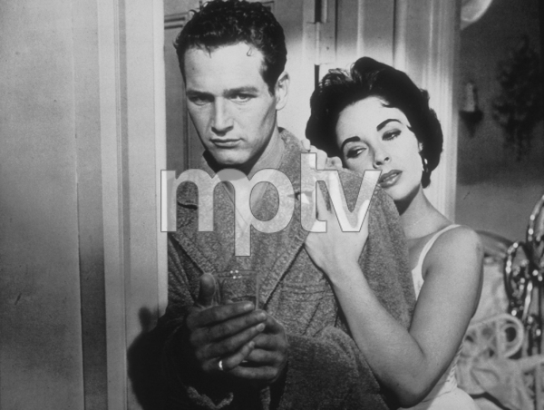 """""""Cat on a Hot Tin Roof""""Elizabeth Taylor, Paul Newman1958 MGMMPTV - Image 9605_0005"""