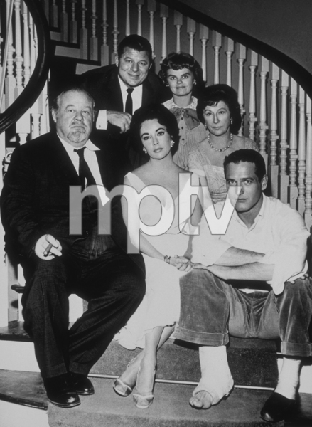 """""""Cat on a Hot Tin Roof""""Burl Ives, Elizabeth Taylor, Paul Newman, Jack Carson, Madeleine Sherwood, Judith Anderson1958 MGM**R.C.MPTV - Image 9605_0007"""