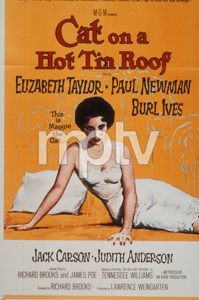 """Cat on a Hot Tin Roof""Poster1958 MGMMPTV - Image 9605_0010"
