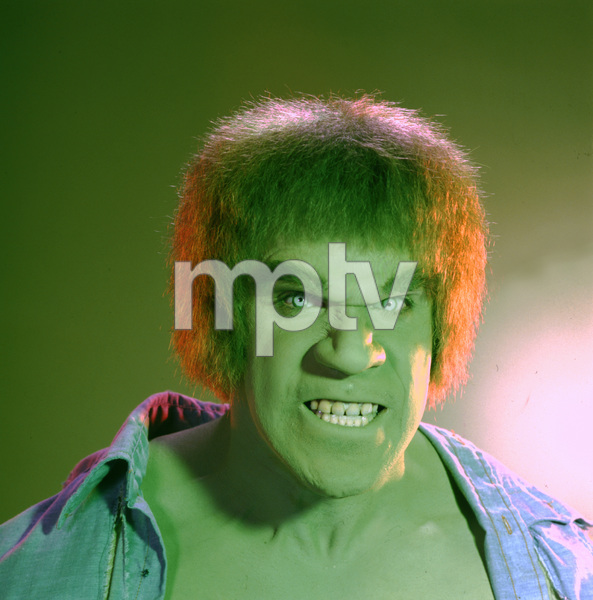 """The Incredible Hulk""Lou Ferrigno1978 CBS**I.V. - Image 9632_0030"