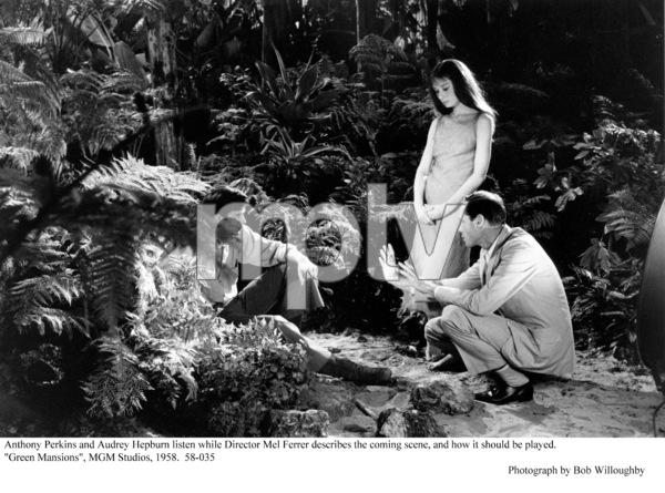 """Green Mansions""Audrey Hepburn, Anthony Perkins, Dir. Mel Ferrer1958 / MGM(c) 1978 Bob Willoughby - Image 9687_0167"